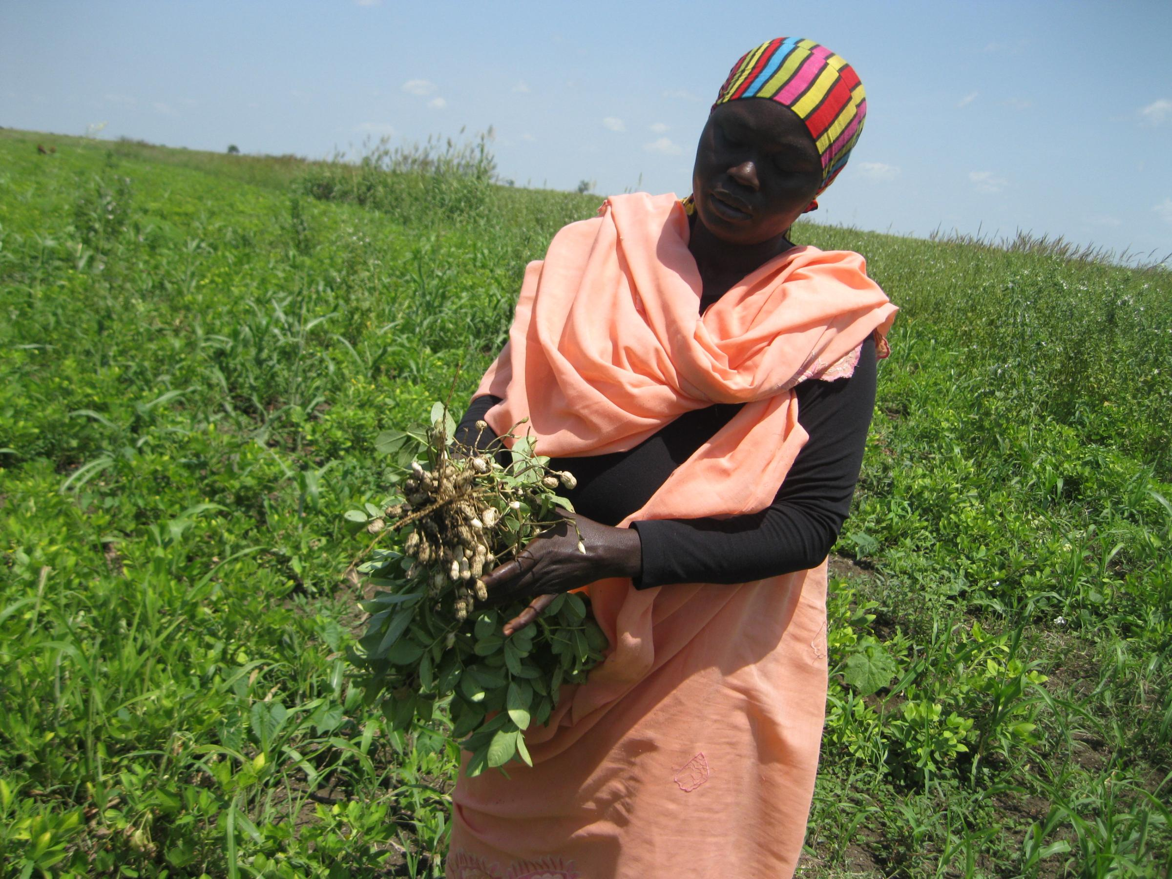 A woman harvesting