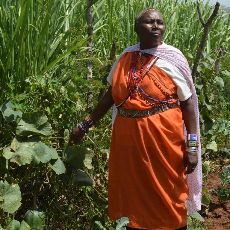 Woman in traditional indigenous dress stands in a field of grass