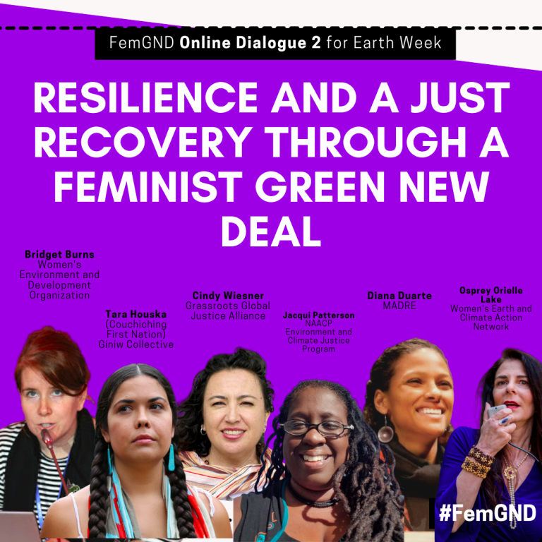 Purple graphic image featuring speakers for an event titled: Resilience and a Just Recovery Through a Feminist Green New Deal