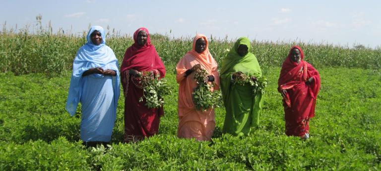Group of women dressed in different colors in a bright green open field.