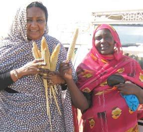 [Our partner, Fatima Ahmed, an agronomist by training, works with women farmers to help grow food and advance women's rights. - c.Zenab]