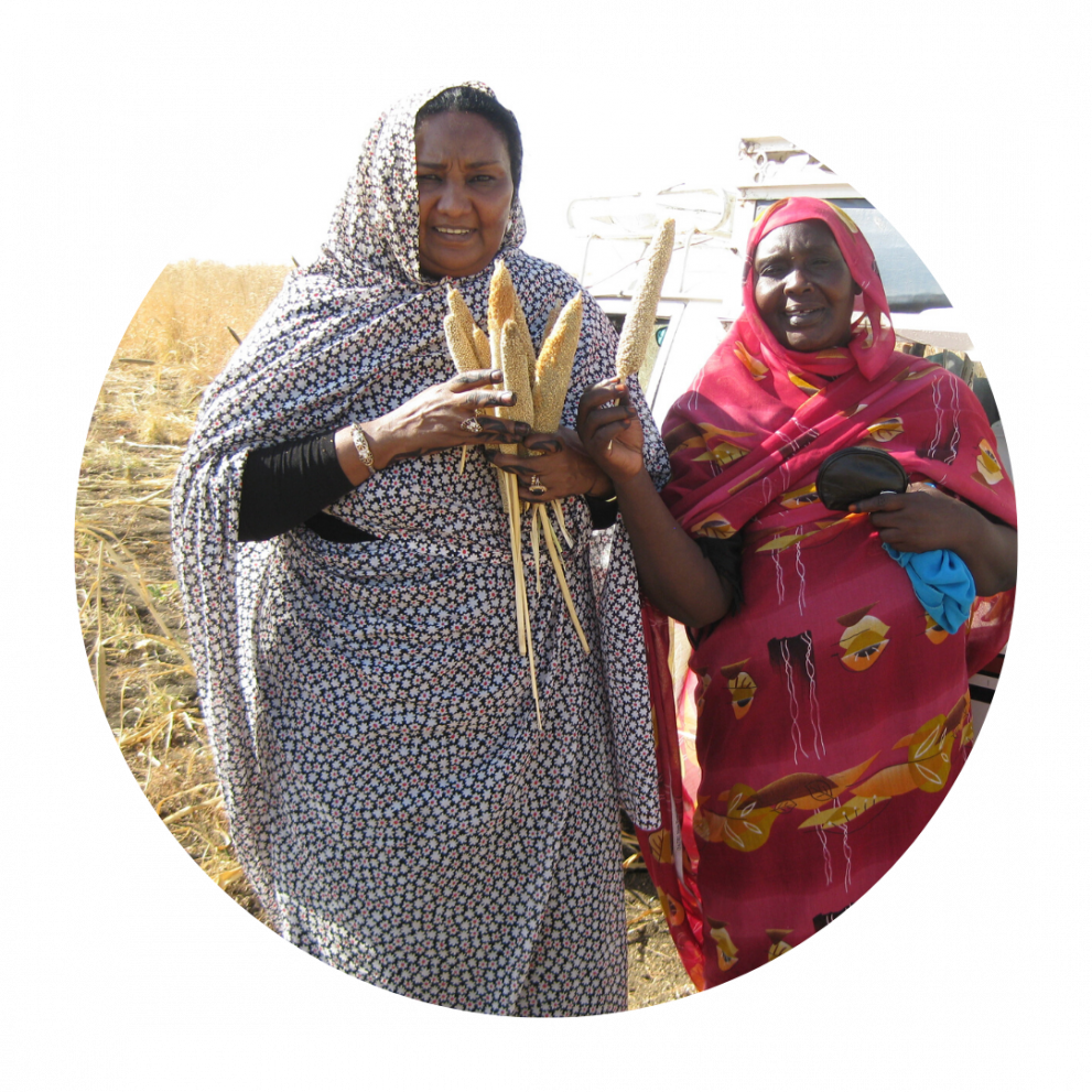 Sudan partner, Fatimah, with a member of Zenab showing their harvest