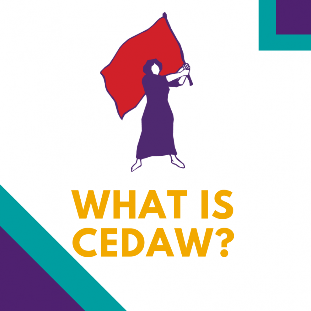 What is CEDAW? Text graphic with MADRE lady logo
