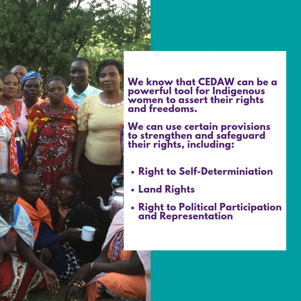 We know that CEDAW can be a powerful tool for Indigenous women to assert their rights and freedoms.     We can use certain provisions to strengthen and safeguard their rights, including: Right to Self-Determiniation   Land Rights   Right to Political Part