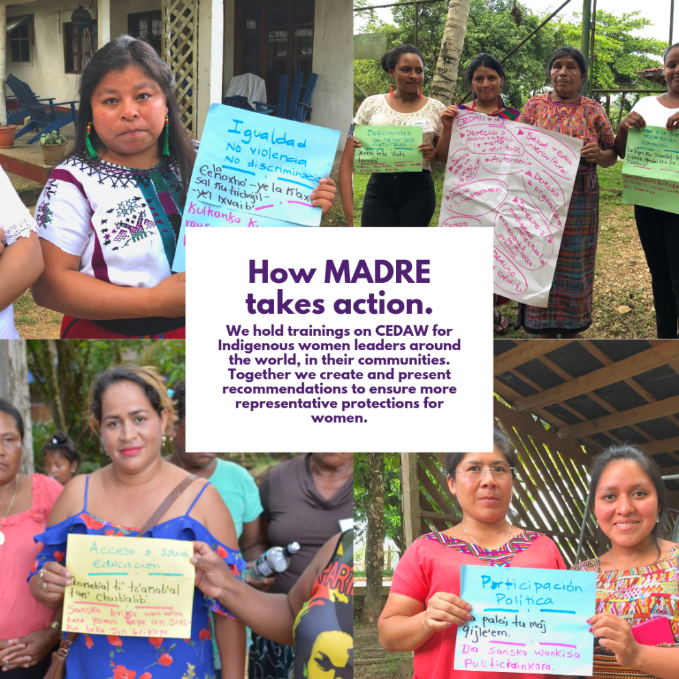 We hold trainings on CEDAW for Indigenous women leaders around the world, in their communities. Together we create and present recommendations to ensure more representative protections for women.