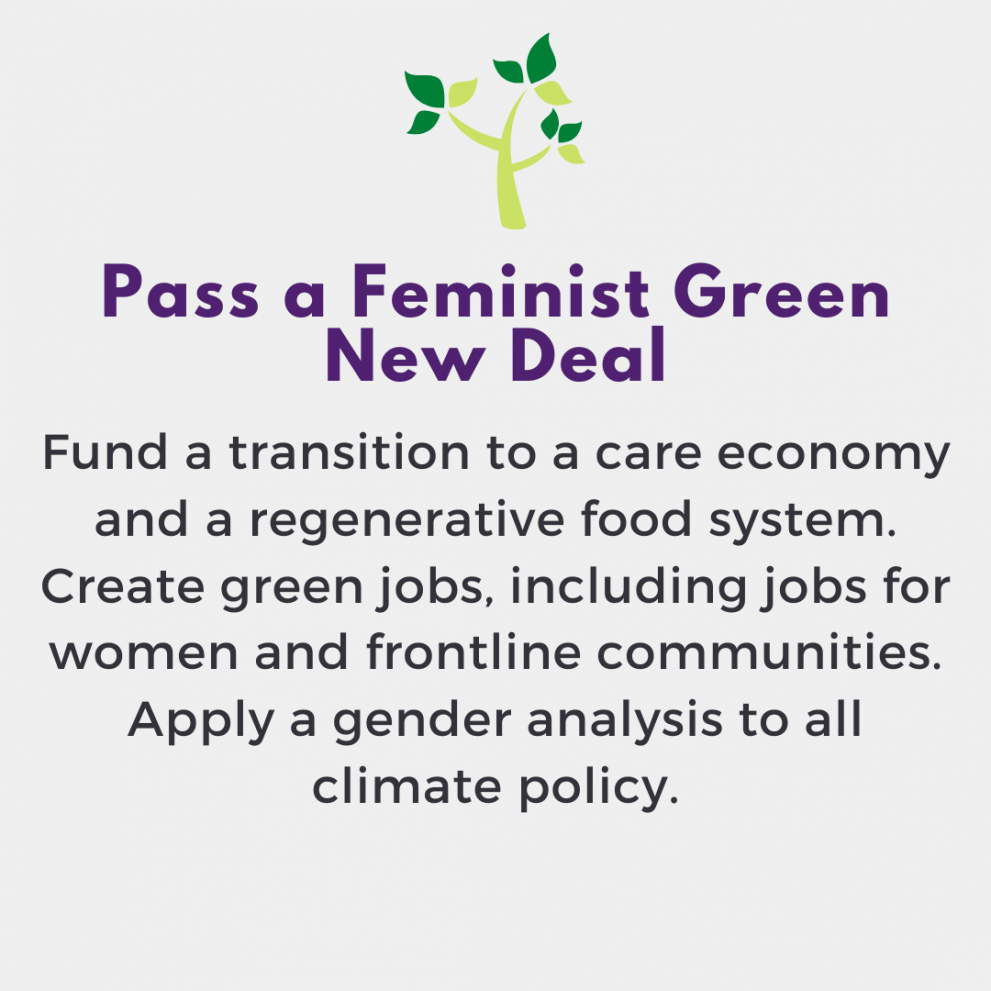 Pass a Feminist Green New Deal. Fund a transition to a care economy and a regenerative food system. Create green jobs, including jobs for women and frontline communities. Apply a gender analysis to all climate policy.
