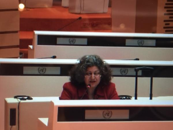 Yanar Mohammed, Executive Director and Founder of the Organization for Women's Freedom in Iraq, speaks before the CEDAW Committee in Geneva.