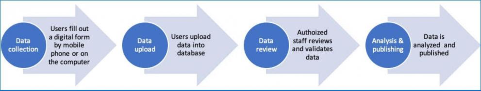 Process graphic- Data collection: Users fill out a digital form by mobile phone or the computer. Data upload: Users upload data into database. Data review: Authorized staff reviews and validates data. Analysis & Publishing: Data is analyzed and published.